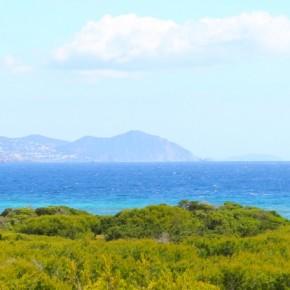 Gej Wakacje: Ibiza [Hiszpania]
